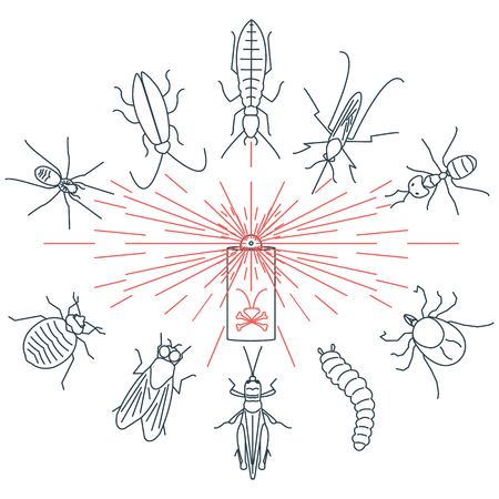 termite: Pest control line icon set with insects-cockroach, tick, bedbug, fly, mosquito, spider, termite, ant, grub, locust. Linear design elements for exterminator service and pest control companies.