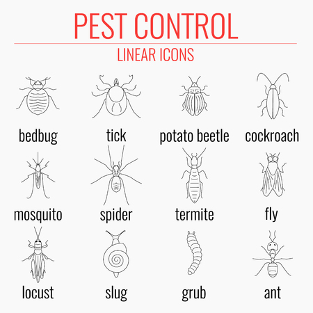 pest control equipment: Pest control line icon set with insects and their names. Perfect for exterminator service and pest control companies.