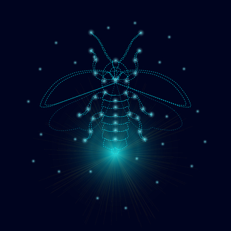 glowworm: Firefly bug  design template. Luminous firefly. Firefly with luminous nodes at the intersections of the ribs. Flying bug glowworm. Lightning bug with its wings open. Isolated vector illustration.
