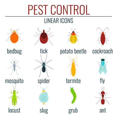 insect control: Collection of pest control colored insect icons.  Perfect for exterminator service and pest control companies. Illustration