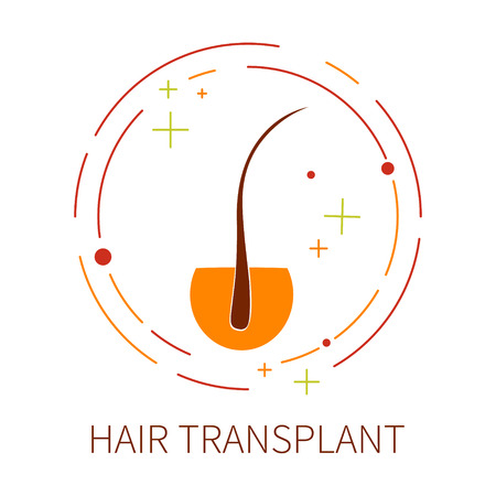 baldness: Hair transplant template made in line style. Hair loss treatment concept. Minimal hair follicle icon is perfect for hair clinics or medical diagnostic centers.