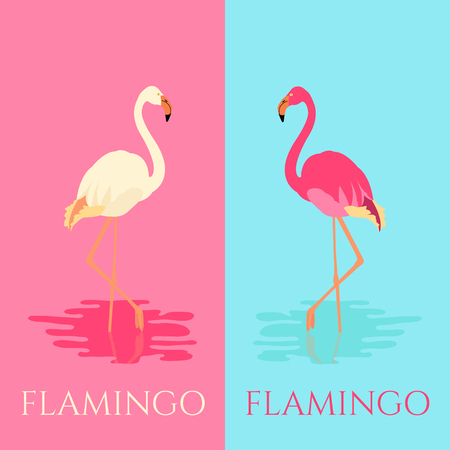 wading: Vector illustration of a flamingo standing in water on one leg in two colors. Exotic bird made in flat style. Flat flamingo bird symbol. Flamingo icon. Flamingo vector silhouette. Wildlife concept.