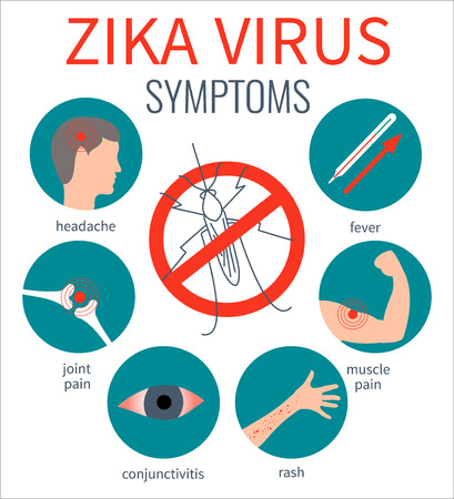red eyes: Zika virus symptom icons - fever, headache,muscle pain, joint pain, red eyes, rash. Zika virus infographic elements. No mosquito sign. Transmission. Zika virus design template. Vector illustration.