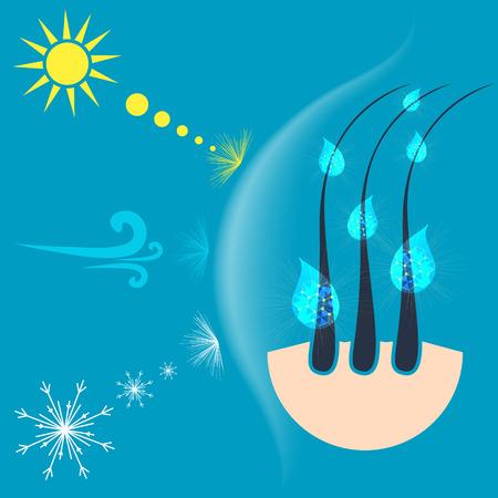 Vektor-Illustration der Haarfollikel durch eine Abschirmung von der Sonne, Wind und Schnee geschützt. Haarschutzkonzept. Vektorgrafik