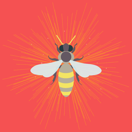 Honey bee template. Apiary vector symbol. Honey bee icon. Isolated vector illustration can be used as icon, pictogram or an infographic element. Perfect for your design. Illustration