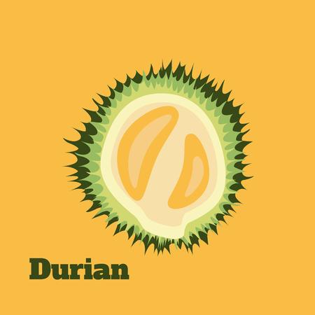 exotic fruit: Durian isolated vector illustration on yellow background. Exotic fruit icon. Organic asian fruit label.