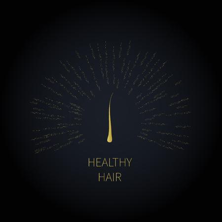 papilla: Hair follicle icon Illustration