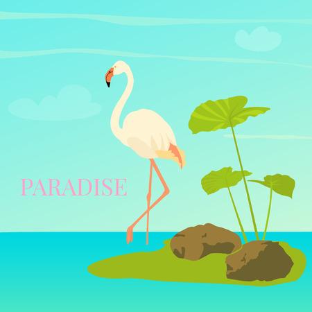 Flamingo standing in water Vector illustration.