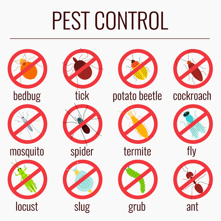 Pest insects with prohibition sign Vector illustration.