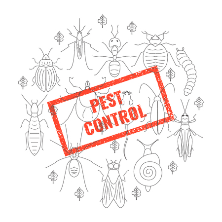 Pest control insect stamp. Vector Illustration