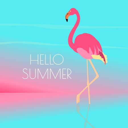 Hello summer quote. Pink flamingo standing in water on one leg. Exotic bird made in flat style. Vacation time concept. Seaside view poster template. Vector illustration.