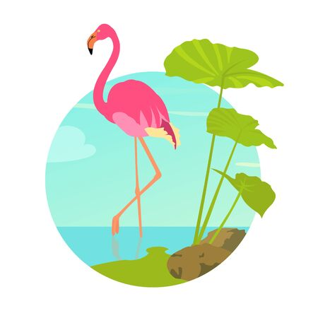 Pink flamingo standing in water on one leg. Exotic bird made in flat style. Summer time vacation concept. Vector illustration. Illustration