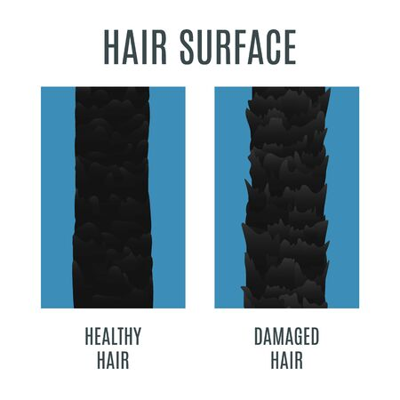 Healthy and damaged hair surface isolated on plain background.