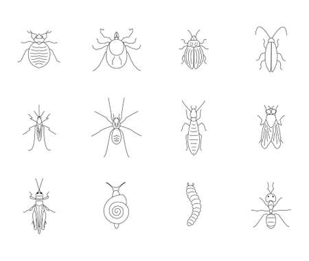 Insect silhouette icon symbols for pest control concept Vector Illustration