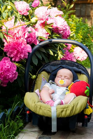 bloomy: Little baby sleeping in a  seat beside bloomy peony flowers at the summer garden Stock Photo