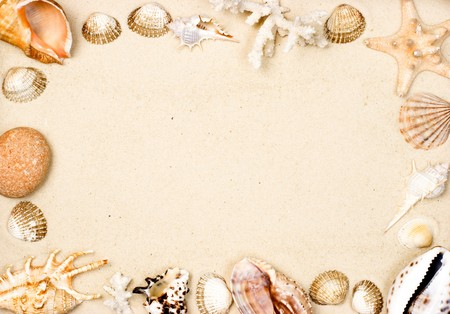 clam beds: Seashells and starfish on sand background frame