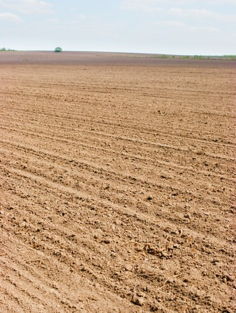 Landscape with a plowed field Stock Photo - 4521581