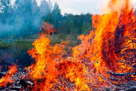 Raging fire of burning forest close-up photo
