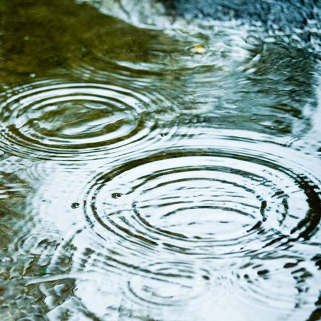 ripples: Rain drops rippling in a puddle Stock Photo