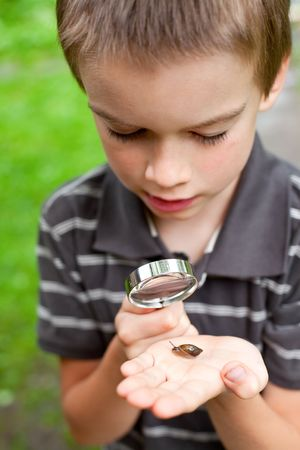 Young boy looking at snail through hand magnifier, focus on snail Stock Photo - 5352446
