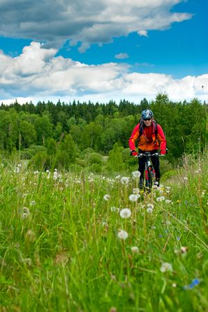 Traveling cyclists crossing forest meadow photo