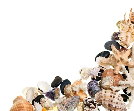 clam beds: Heap of shells and pebbles on white background Stock Photo
