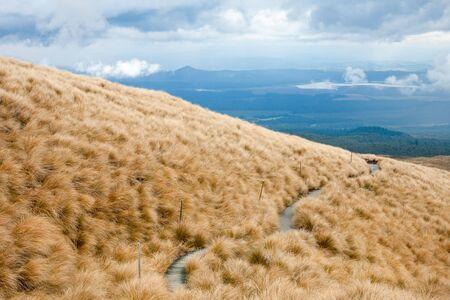 tongariro national park: Public track at Tongariro National Park, New Zealand