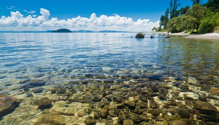 new zealand beach: Crystal clear water of Lake Taupo in the North Island of New Zealand