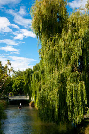 Punting on the Avon River in Christchurch, New Zealand photo
