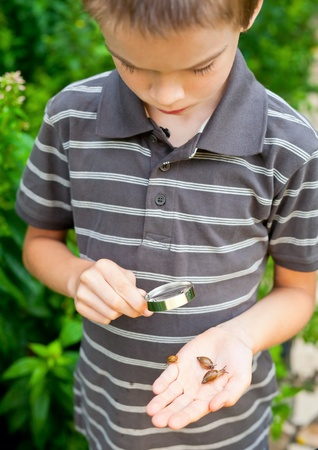 Young boy looking at snails thru hand magnifier, focus on snails Stock Photo - 9467590