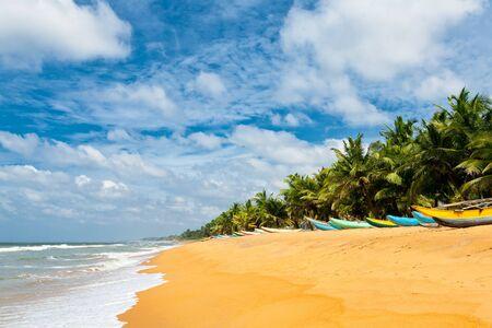 playas tropicales: Barcos de pesca de descanso en la playa vacía en Sri Lanka