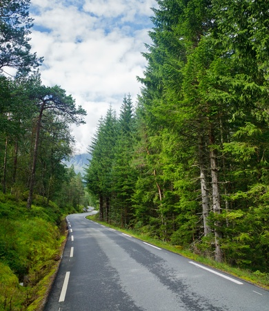 greenwood: Scenic winding road through green forest in Norway