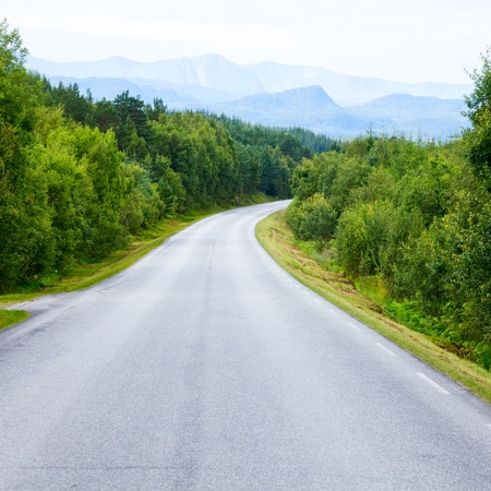 empty street: Scenic winding road through green forest in Norway