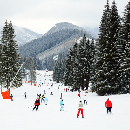 ski track: Skiers and snowboarders going down the slope at Jasna ski resort in Slovakia