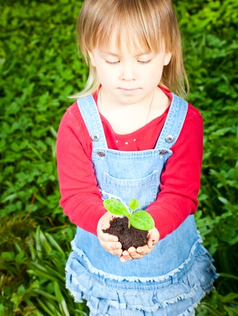 Little girl holding seeding with ground photo