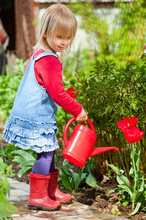 Little girl watering red tulip with red watering can Stock Photo - 13591295
