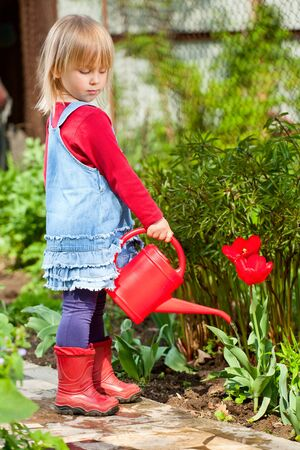 Little girl watering red tulip with red watering can photo