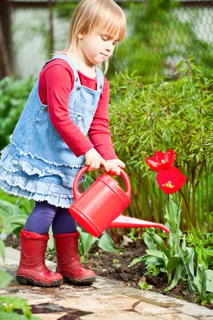 Little girl watering red tulip with red watering can Stock Photo - 13845553