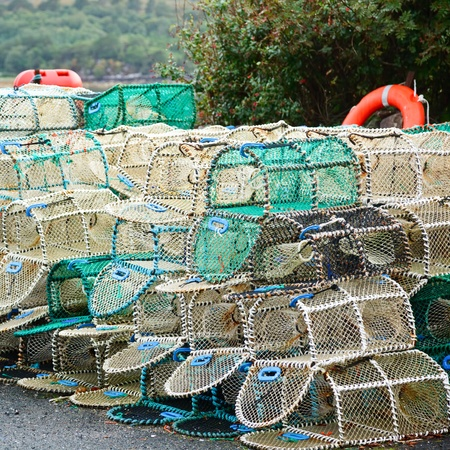 lobster pots: Crab and lobster pots stacked on a pier