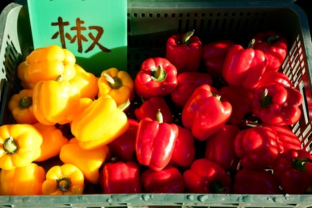 Harvested fresh red and yellow peppers in container for sale in Taiwan photo