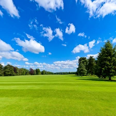 Zomer landschap met groene park gazon en blauwe hemel Stockfoto