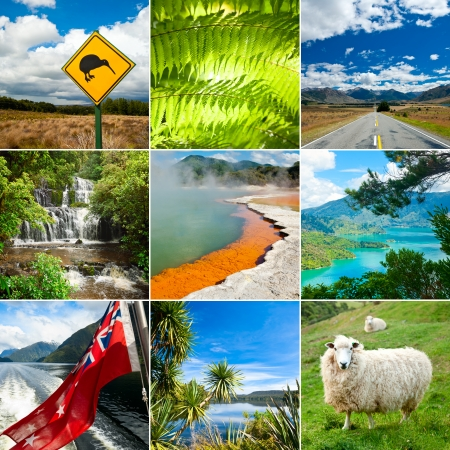 tropical native fern: New Zealand set with Kiwi sign, fern and sheep Stock Photo