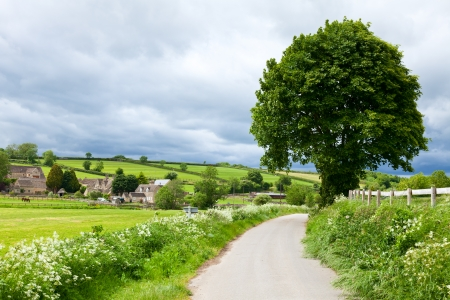 Scenic country road in England photo