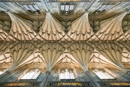 Vault ceiling of the Winchester Cathedral in England