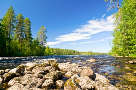 pista: Rapids on the Pistojoki river in Karelia, Russia