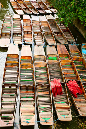 punt: Moored punts on the river Cherwell in Oxford Stock Photo