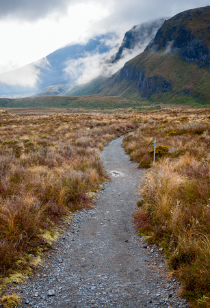 tramping: Pista tramping P�blica en el Parque Nacional de Tongariro en Nueva Zelanda