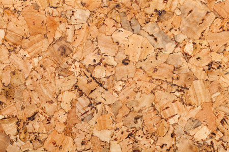 Cork wall or ceiling covering with texture and details