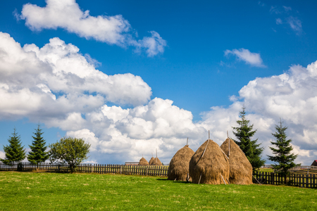 cumulus: Loose stacked hay built around a central pole in Carpathian Mountains, Romania
