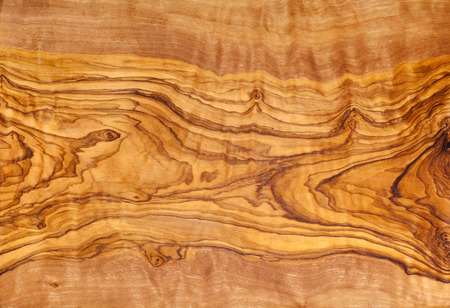 Olive tree wood slice with texture and details 写真素材